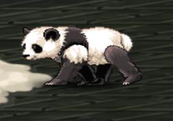 Panda%202.png