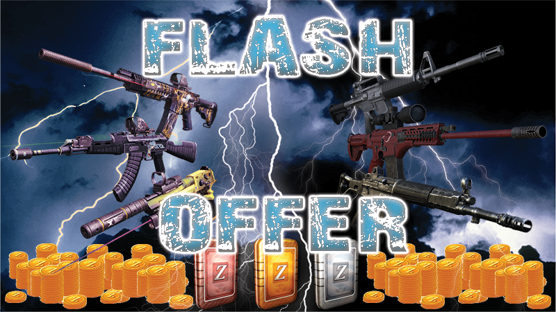 FLASH_OFFER.png