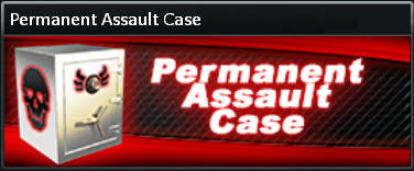 Permanent%20Assault%20Case.jpg