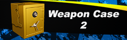 Weapon%20Case%202.png