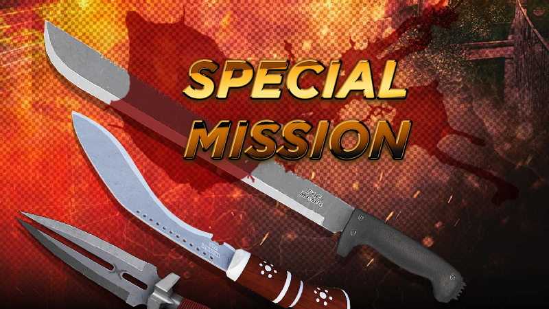 SpecialMission_11.jpg